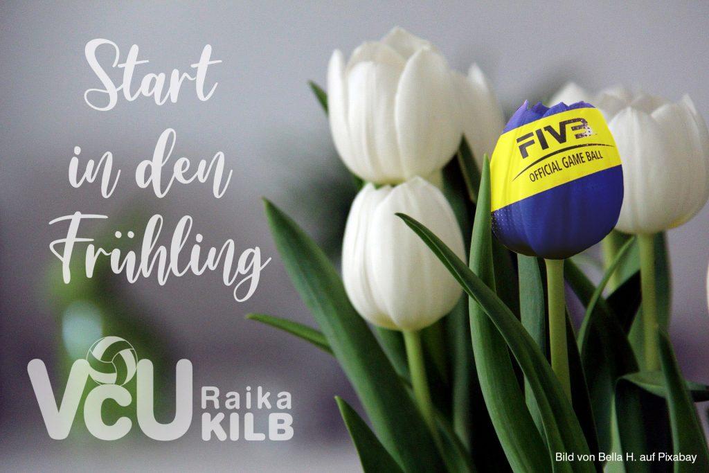 Start in den Frühling mit Tulpenstrauß; VCU Raika Kilb Copyright Bella H. auf Pixabay.